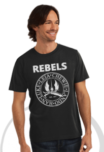 rebels_model